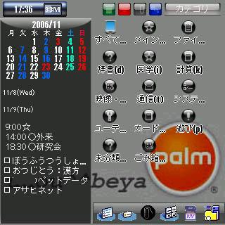 HRCapt20061108173600.JPG